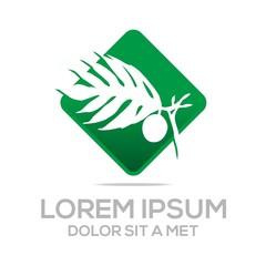 Logo  palm tree natural vector symbol