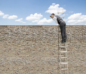 Businessman is Looking Over Brick Wall on Ladder for New Opportunity-Job Search Concept