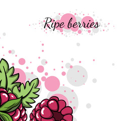 ColorfulBerries31
