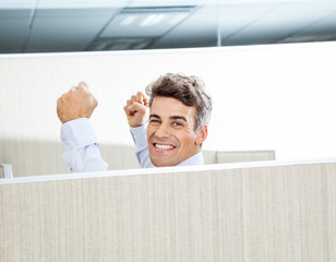 Successful Manager In Cubicle