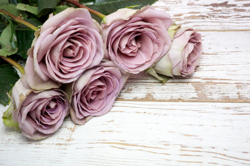purple roses  on wooden surface