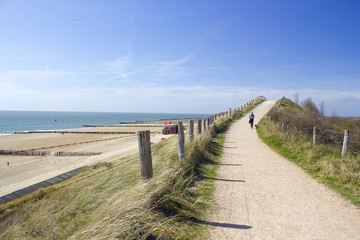 Walking with the dog in the dunes, Zoutelande, Netherlands Wall mural