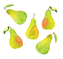 set of pears isolated, watercolor