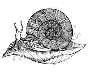 Vector illustration of a totem animal Snail on leaf in black and