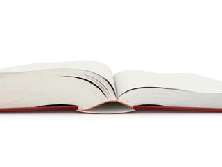 Blank opened book rendered