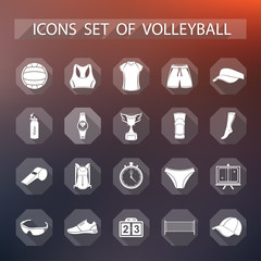 Vector set of flat icons