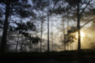 Blurred nature sunrise scene background