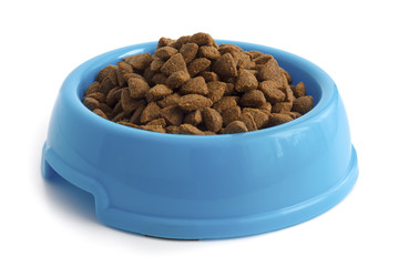 Dry cat food in blue bowl isolated on white.