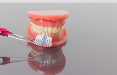 Dental hygiene and cleanliness concept with a toothbrush placed between the teeth on a set of toy plastic false teeth or dentures over a grey background with copyspace