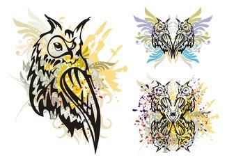 Owl splashes
