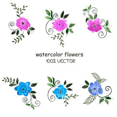 Background of watercolor flowers on a white background