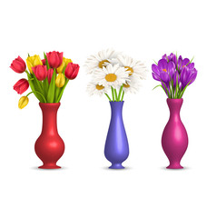 Flowers chamomiles tulips and crocuses in vases isolated on whit