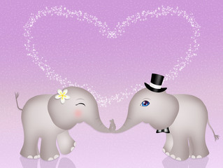 funny elephants in love