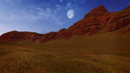 Canyon rocks under half moon