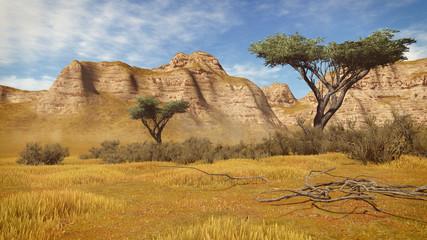 Acacia trees among sandstone cliffs
