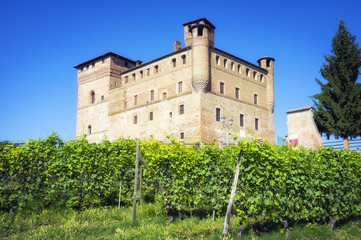 The castle of Grinzane Cavour. Color image