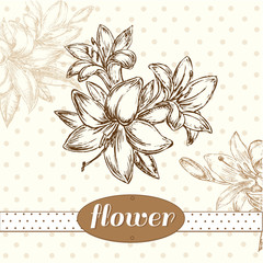 flower lily vintage background