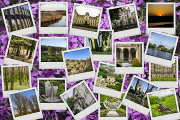Mosaic collage mix travel with pictures of different places, landscapes and objects shot by myself on bush of violet flowers background