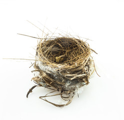 The nests on white background.