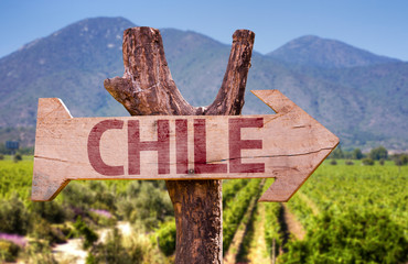 Chile wooden sign with winery background