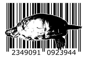 Turtle barcode animal design art idea