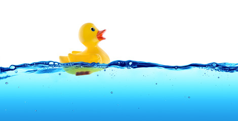 Rubber duck float in water