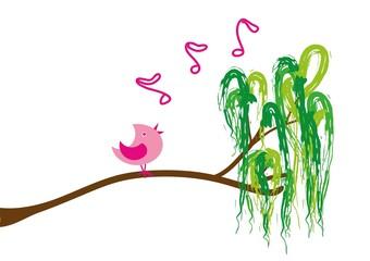 Fototapeta ptak,śpiewa,muzyka,drzewo,przyroda,naklejka,ozdoba