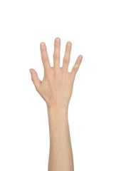 hand showing the five fingers