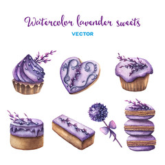 Vector watercolor lavender sweets set.