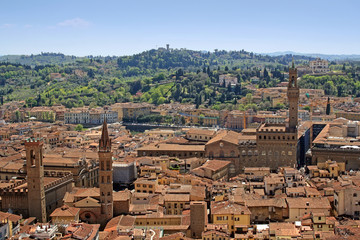 Florence view with palazzo