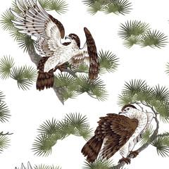 日本画 鷹に松