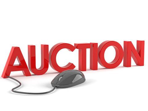 Auction  Concepts