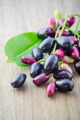 Jambolan plum, Java plum (Syzygium cumini) on white background.