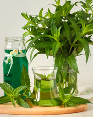 Concentrate mint syrup and fresh drink