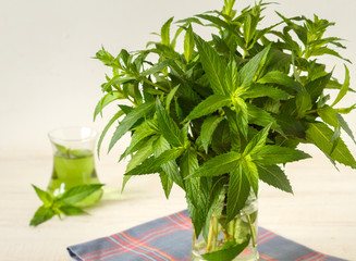 Fresh mint leaves and juice