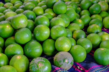 limes on fabric