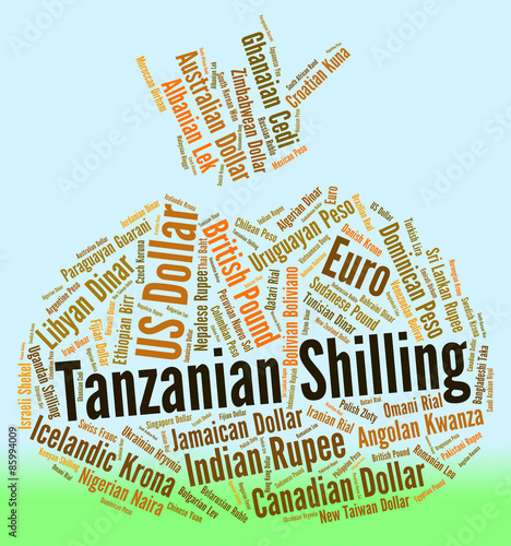foreign exchange market in tanzania
