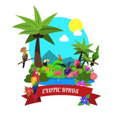 Exotic Birds Concept