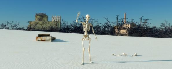 skeleton in the desert