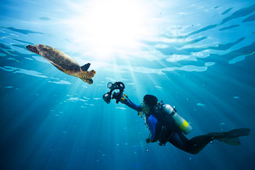 Spoed Fotobehang Duiken diver takes photo of sea turtle in the blue ocean