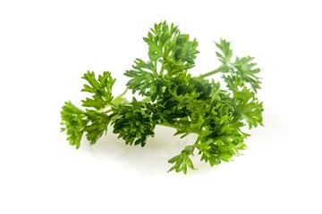 Herb, Basil, Rosemary.