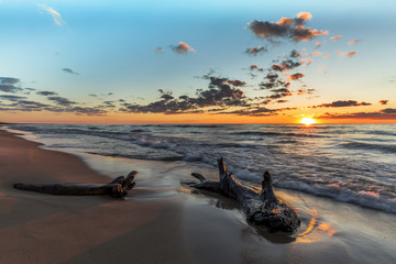 Driftwood on a Lake Huron Beach at Sunset Wall mural