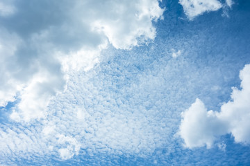Wall Mural - cloudy sky