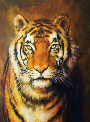 tiger head, color oil painting on canvas.