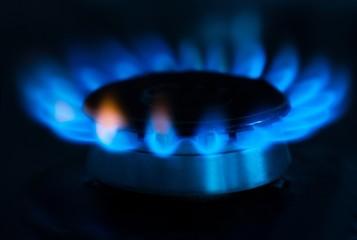 Gas, flame, burner.