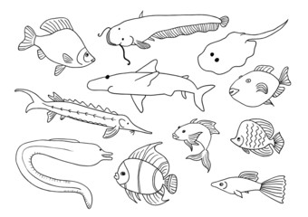 Hand drawn cartoon fish set
