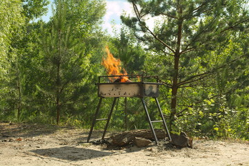 Brazier in the forest
