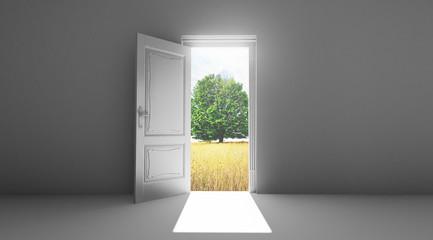 Porta aperta su giardino e albero