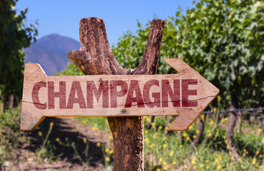 Champagne wooden sign with winery background