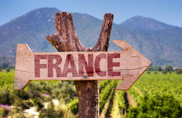 France wooden sign with winery background